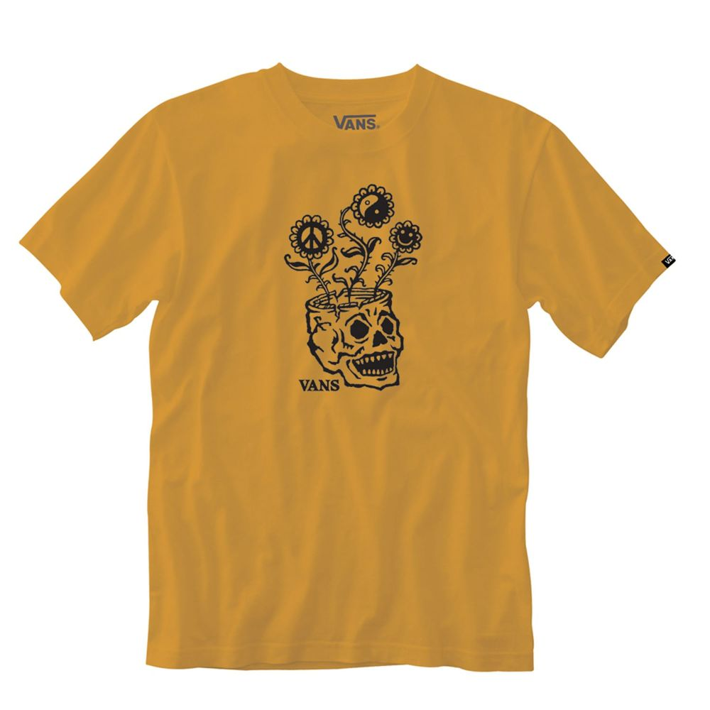 Camiseta-Sprouting-Ss-Hombre-Vans